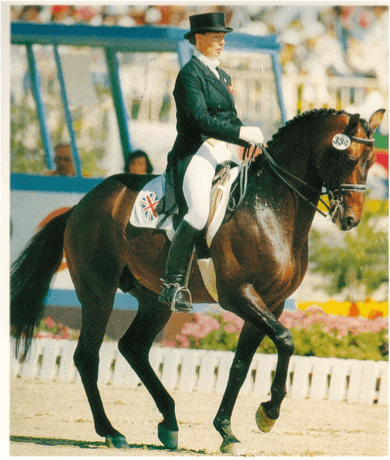 Horse and rider doing dressage